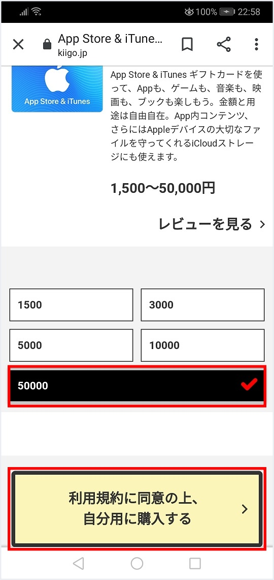 kiigoItuneカード購入方法額面